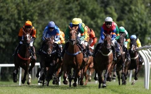 Marlborough racing tips for Tuesday, September 10