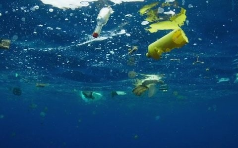 Parts of the ocean have seven times more plastic than fish, study finds