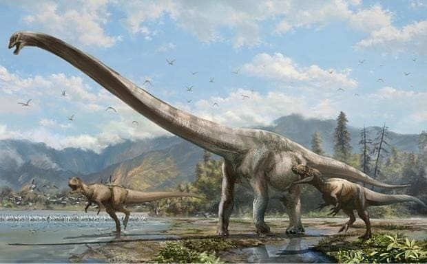 Long-necked Jurassic 'dragon' discovered in China