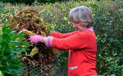 A quiet word about leaf blowers, tips on winter herbs from garden expert Helen Yemm