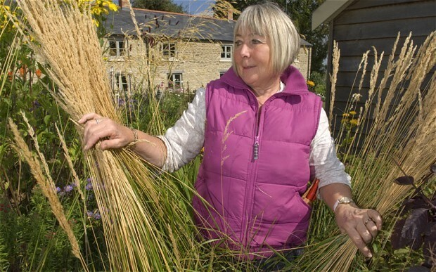 Old wives' tales about gardening: so which are true?