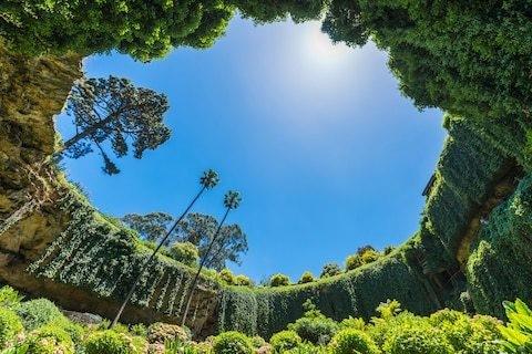 The Australian sinkhole that's now a secret garden