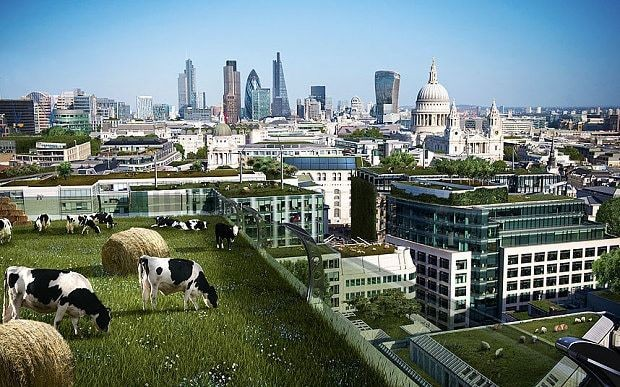The future of Britain? floating cities and high-rise farms