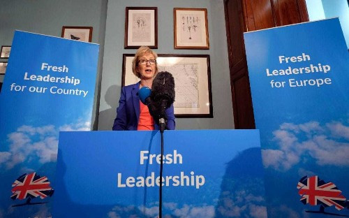 After Theresa May, the Tories could benefit from Andrea Leadsom's Maggie-esque steel