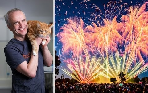 Pet Subjects: How can we keep our pets safe over Guy Fawkes night?
