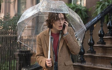 A Rainy Day in New York, review: Woody Allen's latest is both feeble and ugly