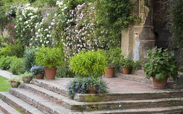 How to create an amazing garden wall