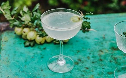 Gooseberry 