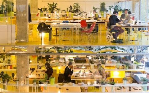 We want walls: the future of office design - and the demise of open plan