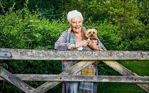 Dame Judi Dench on giving up driving: 'I would kill somebody if I got behind the wheel'