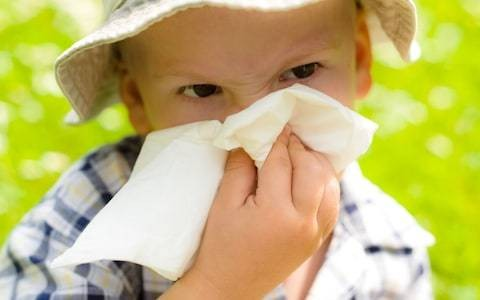 Heatwave sparks huge rise in severe hay fever attacks