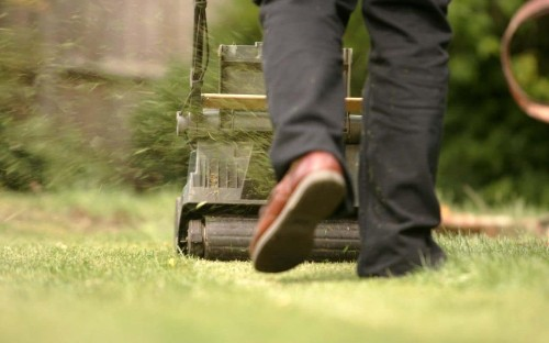Gardener let go by National Trust property 'because he needed qualifications to mow the lawn'