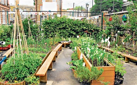 The London school taking veg from playground to plate