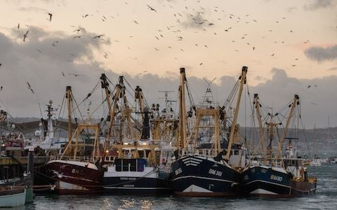 France in last-minute push to force Boris Johnson to give EU fishing boats access to British waters