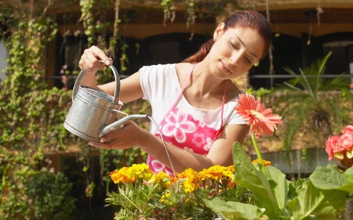 Stumped by gardening? Here's ten easy things to try this weekend