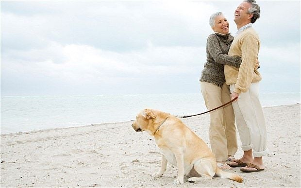 Study finds 'life in the old dog' for pet owners