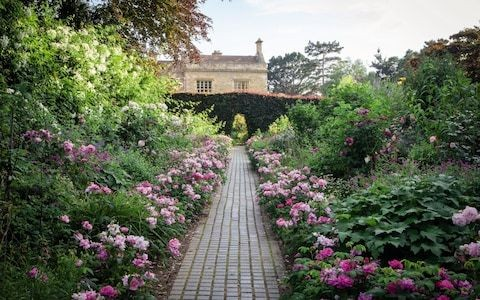 An exclusive look into Kiftsgate, the stunning Gloucestershire grounds with a history of female gardeners