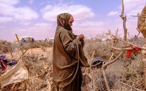 A quarter of the world's population face extreme water shortages