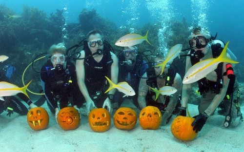 Halloween 2014: The best pumpkins and costumes of the spooky season - Telegraph