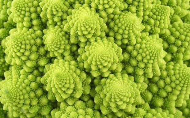 How to grow and cook cauliflower, 2015's trendiest veg