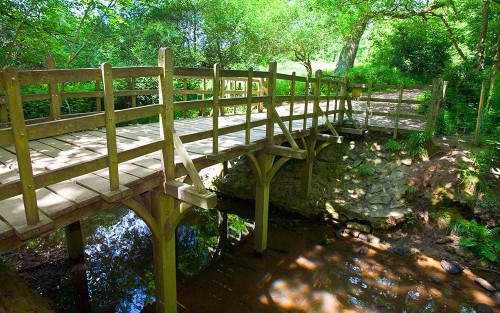 Brilliant things to do with the family around Battle Abbey