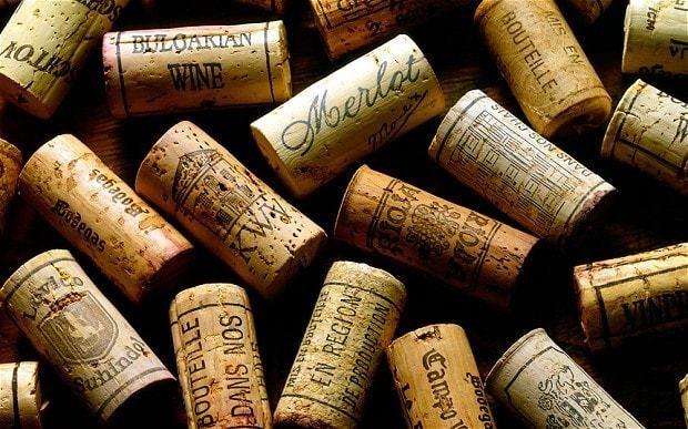 Global wine shortage on the horizon, economists warn