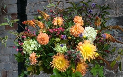 How to use zinnias and dahlias as cut flowers, by Simon Lycett
