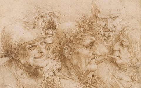 Leonardo da Vinci: A Life in Drawing review, Queen's Gallery: you'll never feel closer to the brilliance of Leonardo