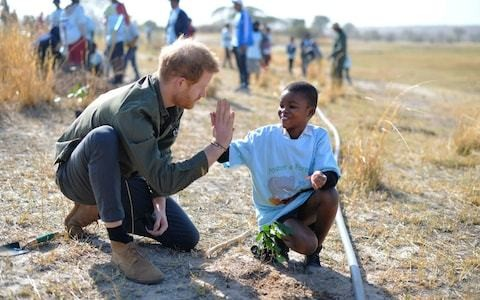 Duke of Sussex leaves duchess and Archie in Cape Town as he visits Botswana