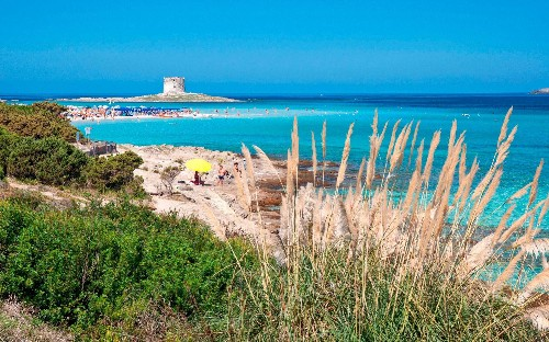 Visitors to stunning Sardinian beach will need a ticket - and a biodegradable bracelet - this summer