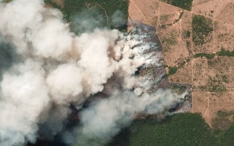 Why is the Amazon burning and how bad are the fires?