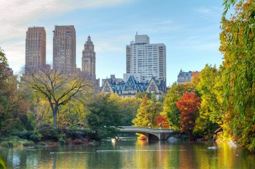 10 of the best things to do in Central Park