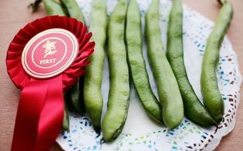 Pick of the best garden shows for veg growers