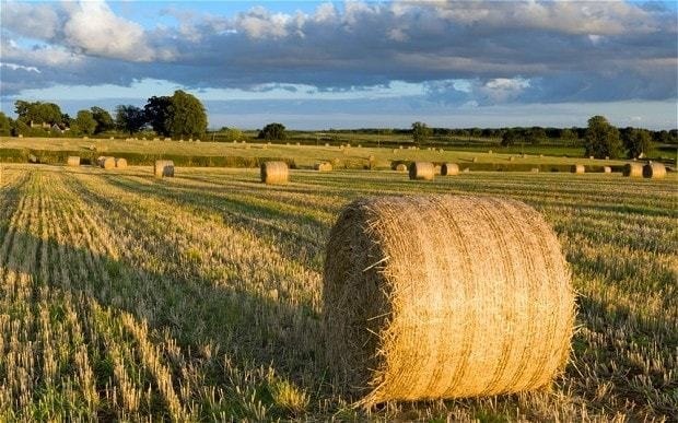 Price of farmland trebles in decade and 'set for £10k an acre'