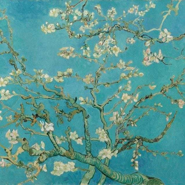 The Director's Guide: the Van Gogh Museum, Amsterdam