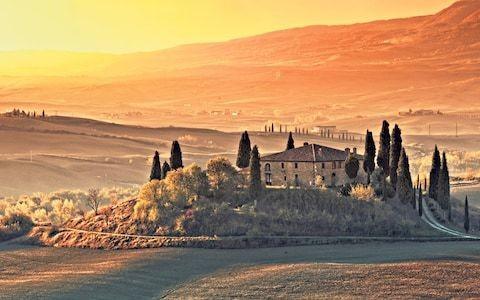 Italy: Tuscany's truffle trail
