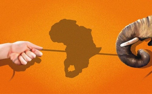 Man vs elephant: Why farmers across Africa and Asia are going to war