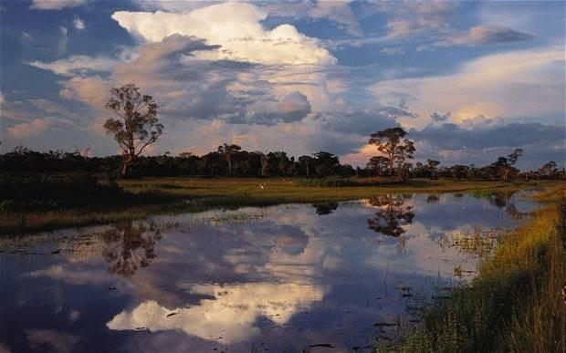 Huge increase in Amazon deforestation rate