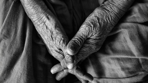 Who Will Take Care of the Elderly?