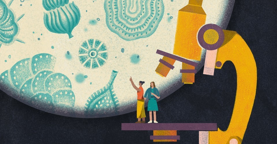 Navigating the 'Old Boys' Club' of Science, With a Friend