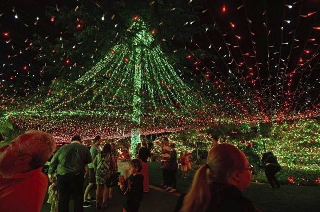 Man Decorates House With 502,165 Holiday Lights, Shatters World Record