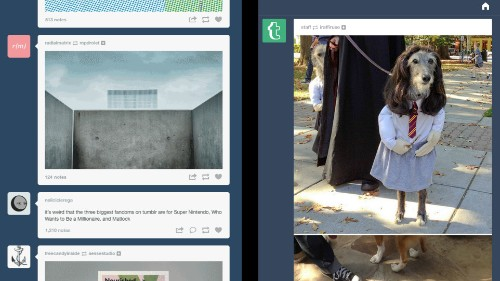 'Bluespace': The Unintended Creative Effect of Tumblr's Wider Posts