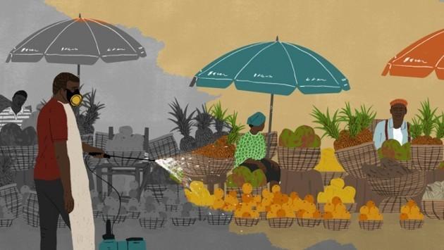 Haiti's Unstoppable Outbreak