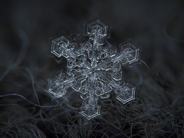 How to Take a Picture of a Single, Ultra-Magnified Snow Flake