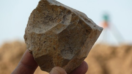 2.4-Million-Year-Old Stone Tools Turn Up in an Unexpected Place