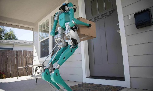 Meet Your Future Package Delivery Team: A Self-Driving Vehicle and A Robot
