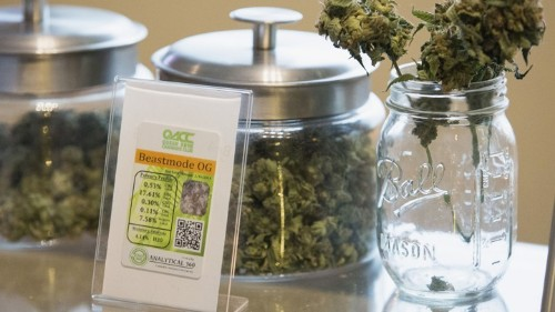 Obama Just Gave Legal Marijuana a Big Boost