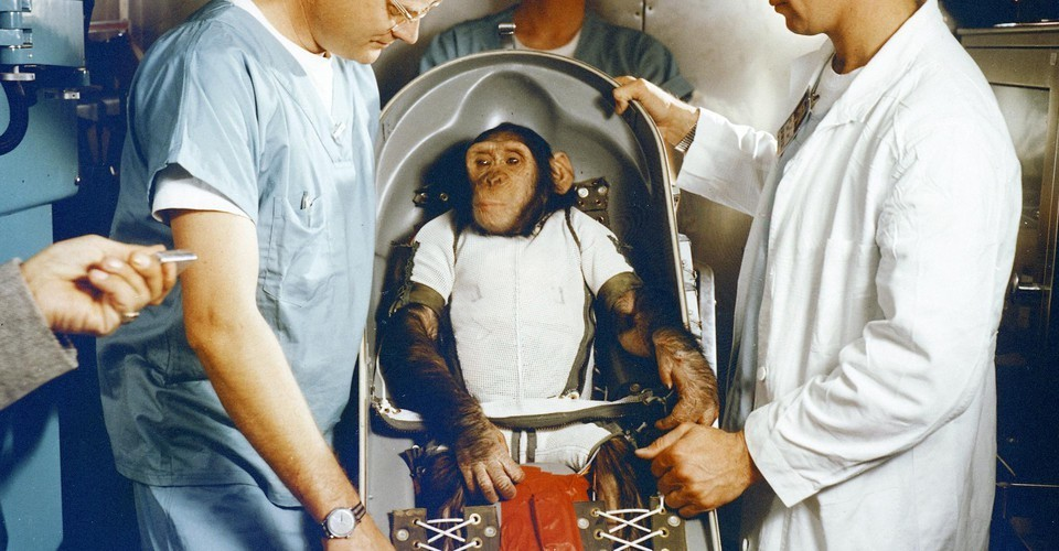 Why Soviets Sent Dogs to Space While Americans Used Primates