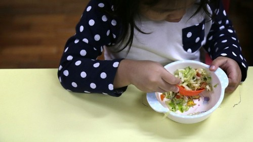 The Healthy-Lifestyle Curriculum
