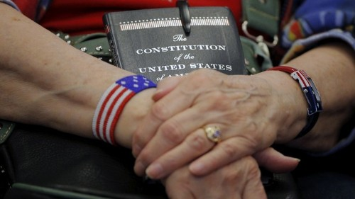 The Nerd's Dream Guide to the U.S. Constitution